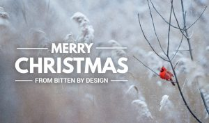 Merry Christmas from Bitten By Design